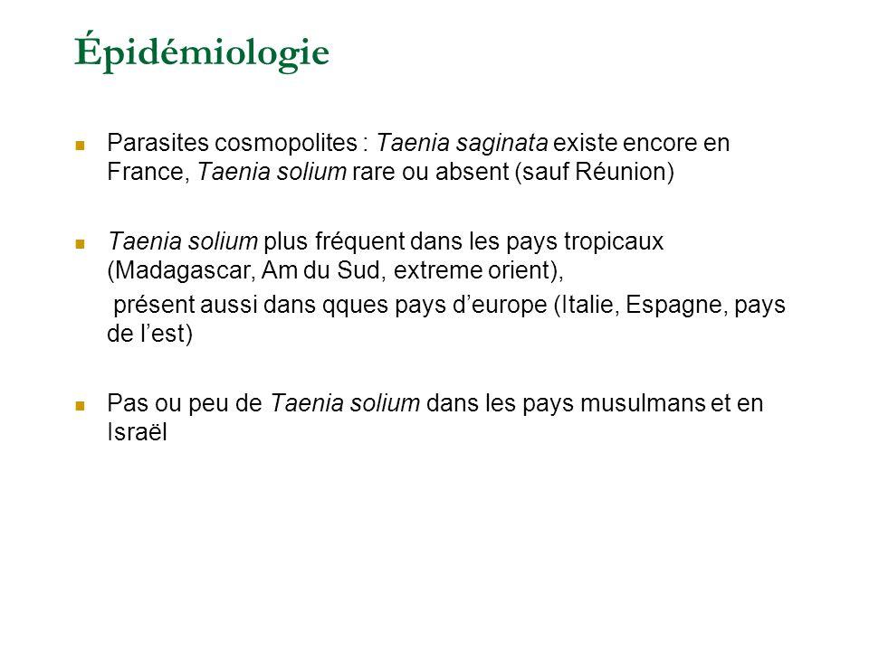Épidémiologie Parasites cosmopolites : Taenia saginata existe encore en France, Taenia solium rare ou absent (sauf Réunion)
