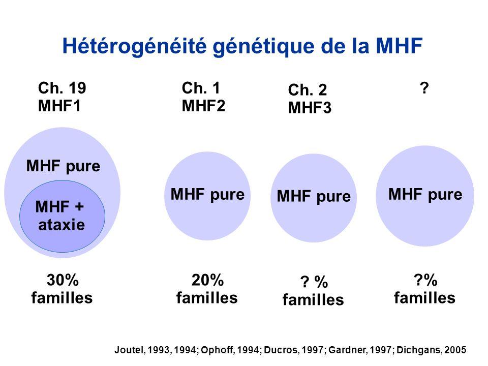 Hétérogénéité génétique de la MHF