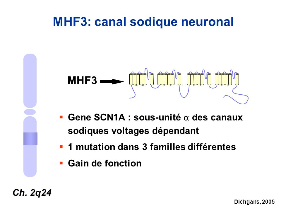 MHF3: canal sodique neuronal