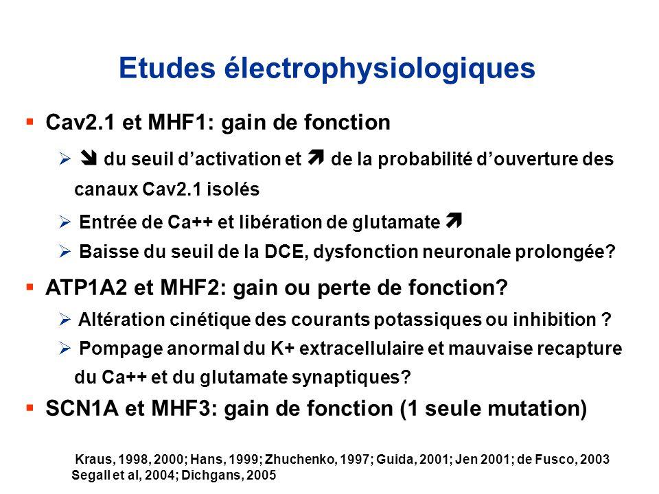 Etudes électrophysiologiques