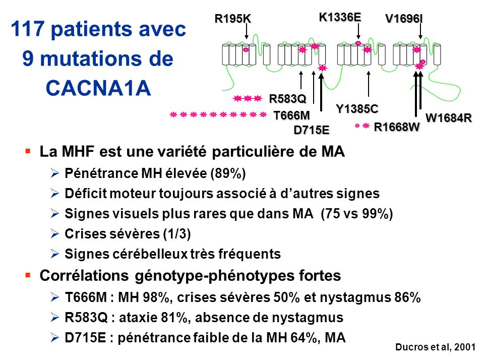 117 patients avec 9 mutations de CACNA1A