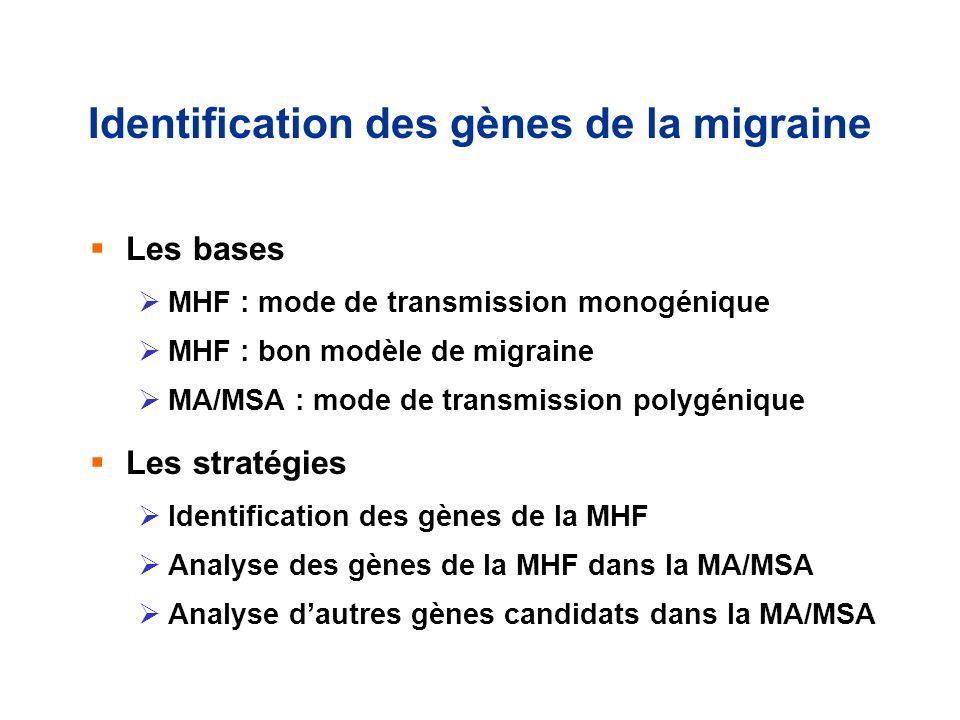 Identification des gènes de la migraine
