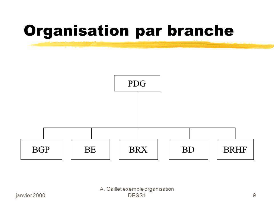 Organisation par branche