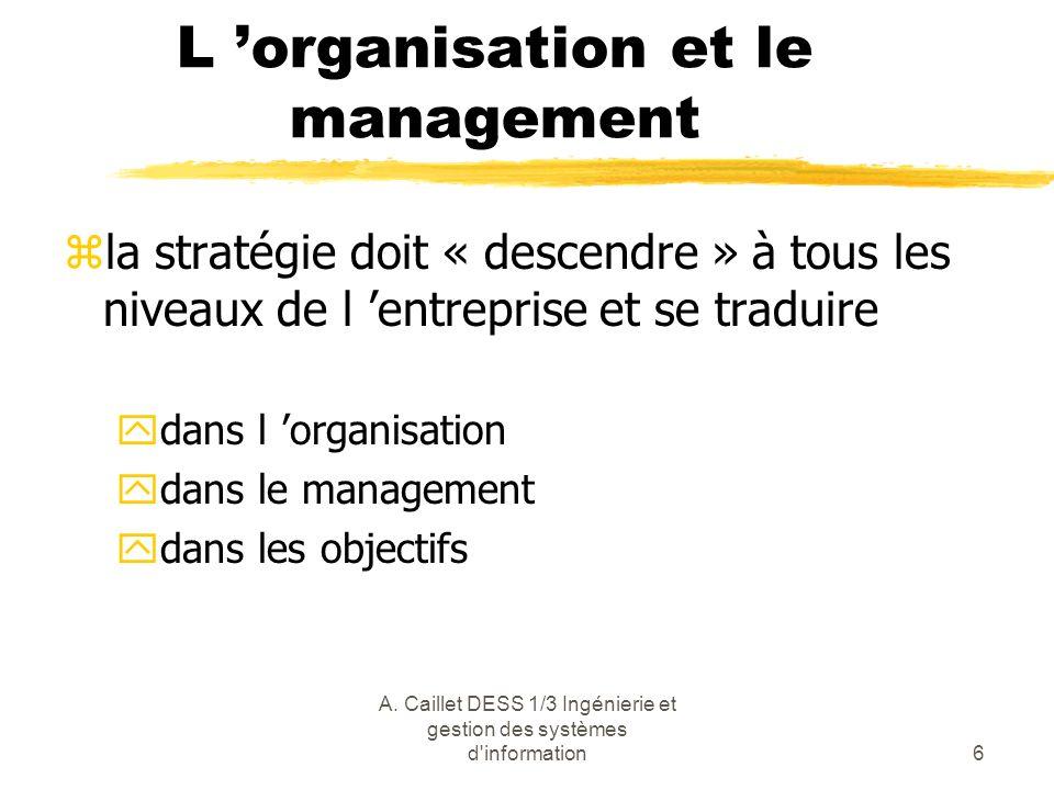 L 'organisation et le management