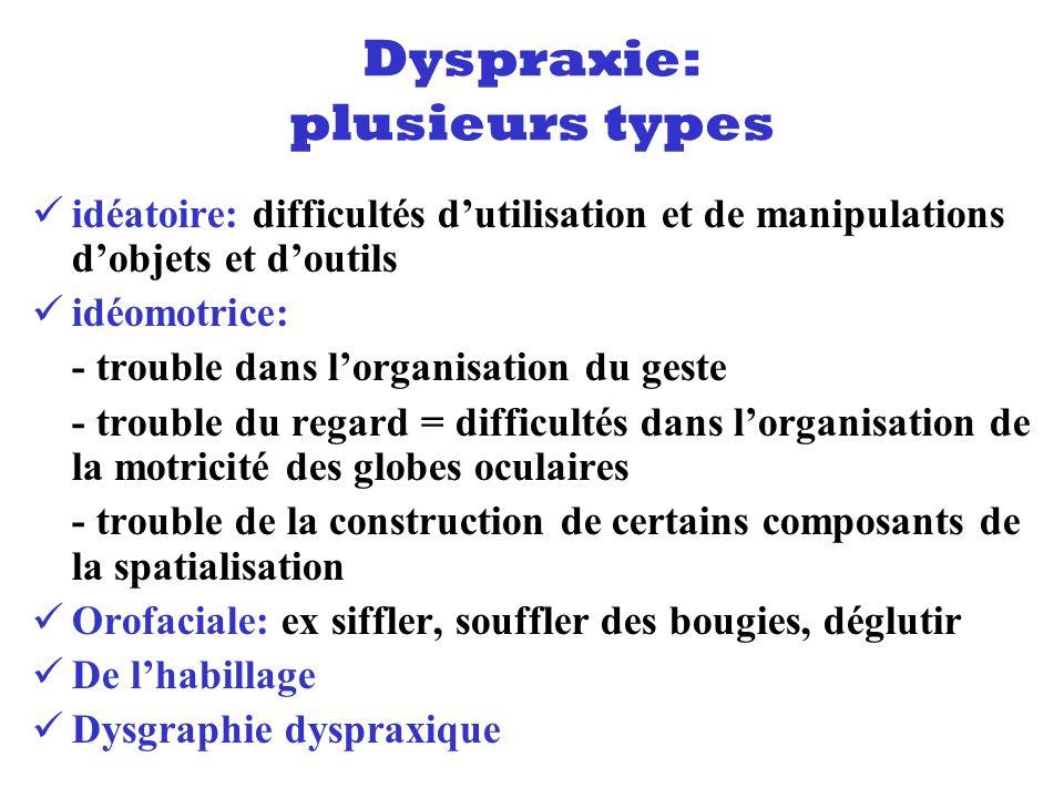 Dyspraxie: plusieurs types