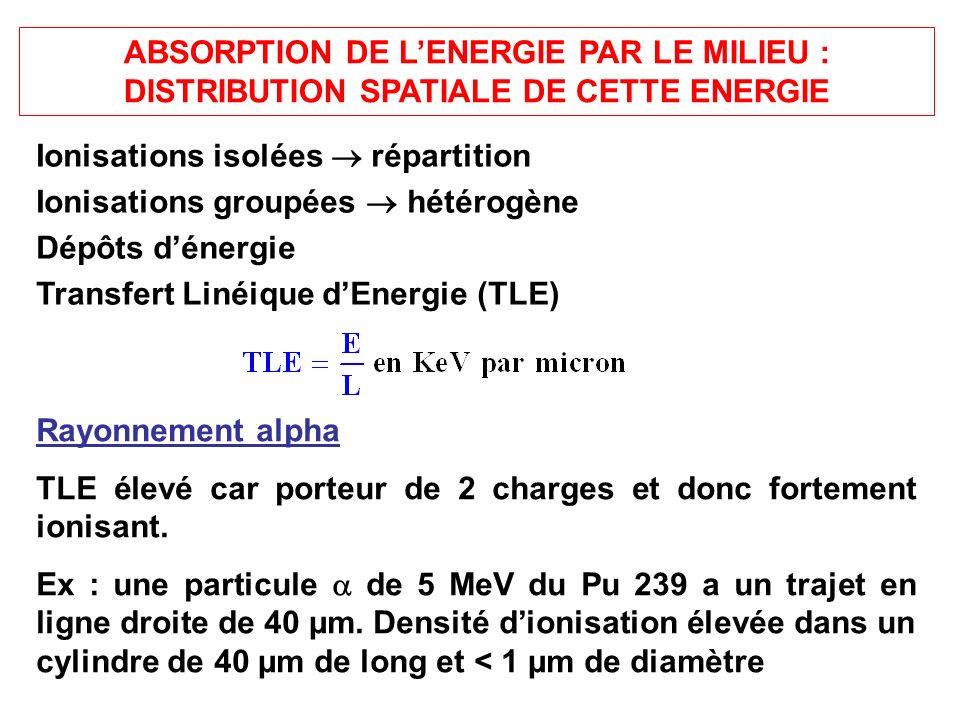ABSORPTION DE L'ENERGIE PAR LE MILIEU : DISTRIBUTION SPATIALE DE CETTE ENERGIE