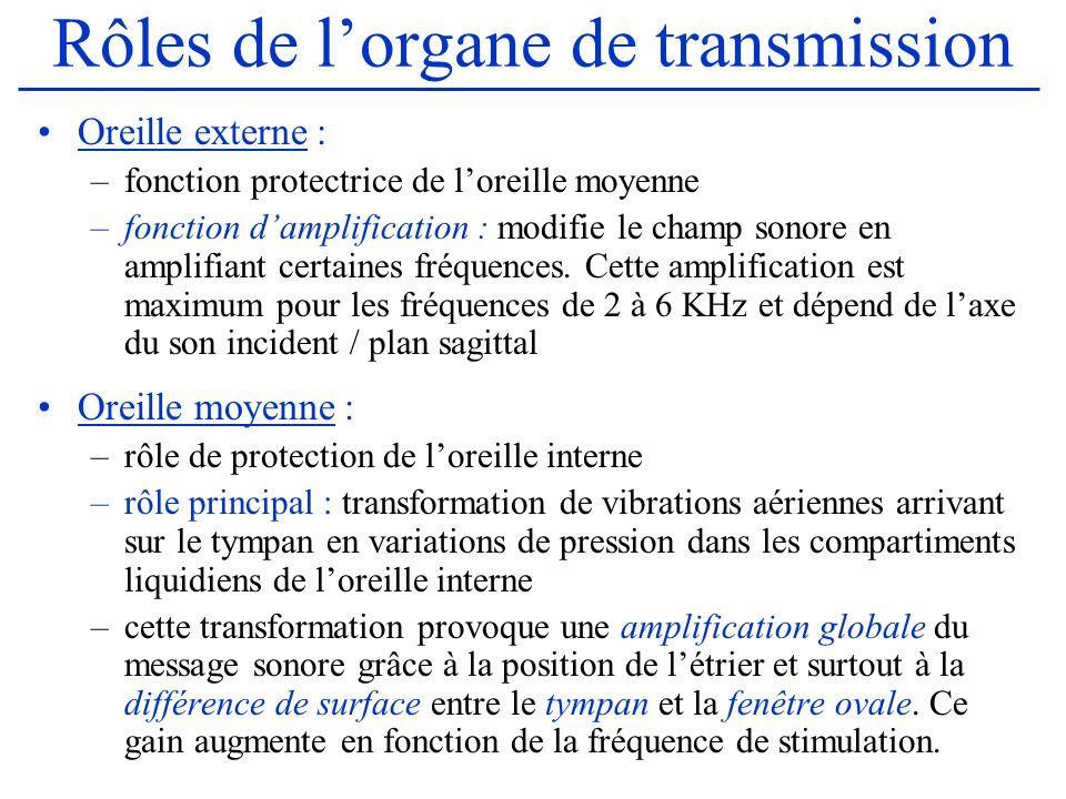 Rôles de l'organe de transmission