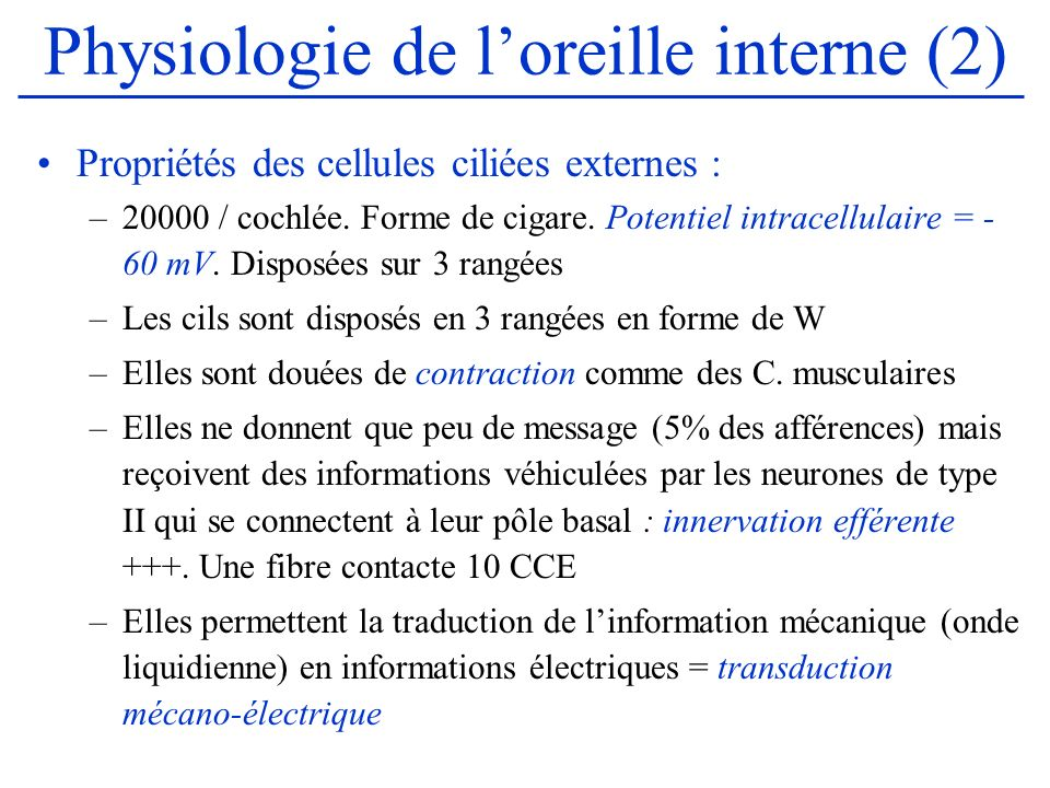Physiologie de l'oreille interne (2)