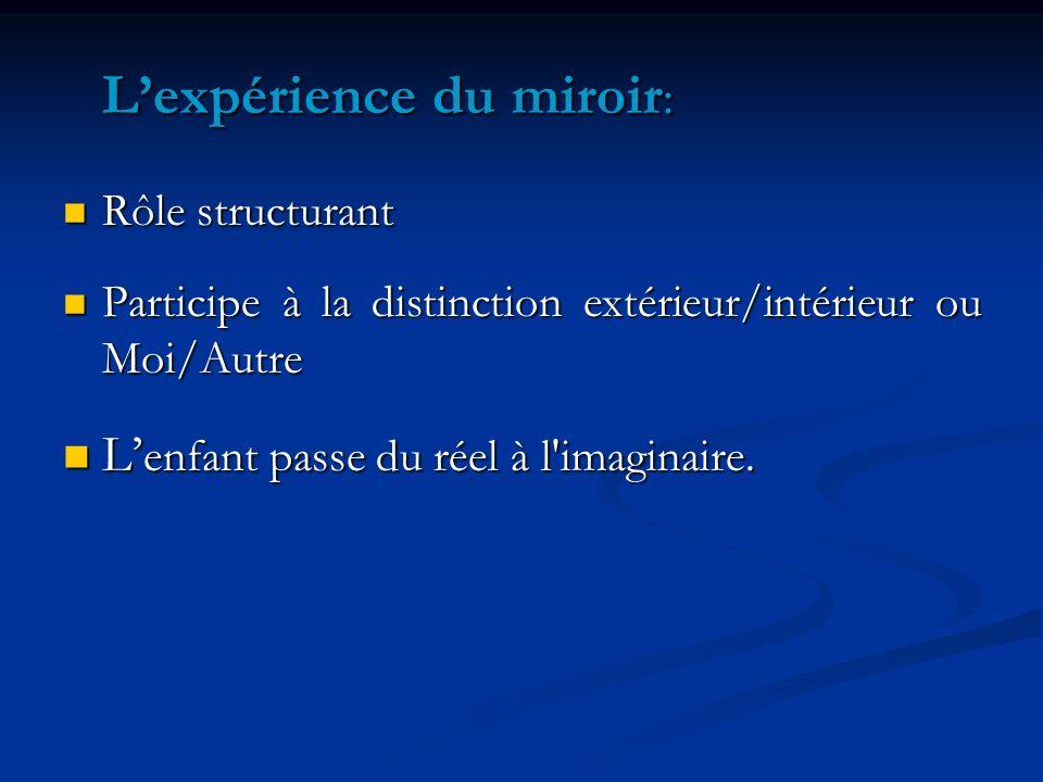L'expérience du miroir: