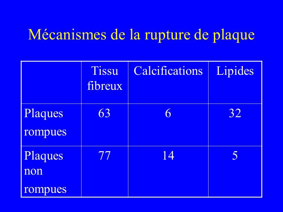 Mécanismes de la rupture de plaque