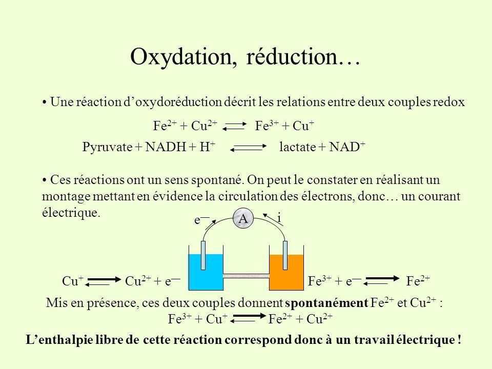 Oxydation, réduction… Une réaction d'oxydoréduction décrit les relations entre deux couples redox. Fe2+ + Cu2+ Fe3+ + Cu+