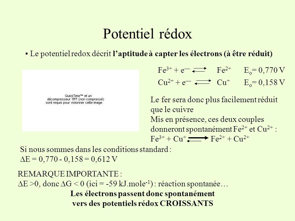 Potentiel rédox Le potentiel redox décrit l'aptitude à capter les électrons (à être réduit) Fe3+ + e— Fe2+