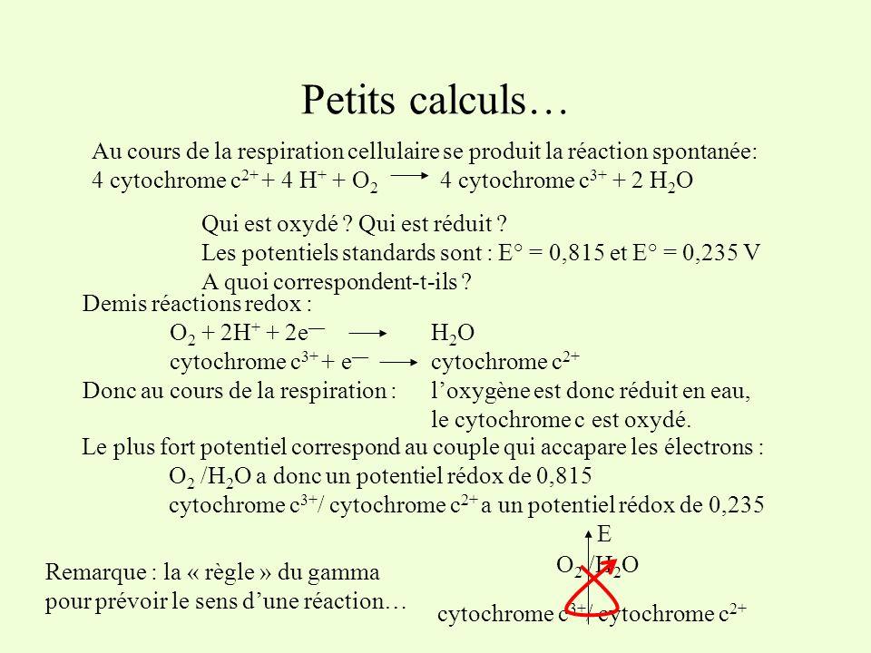 Petits calculs… Au cours de la respiration cellulaire se produit la réaction spontanée: 4 cytochrome c2+ + 4 H+ + O2 4 cytochrome c3+ + 2 H2O.