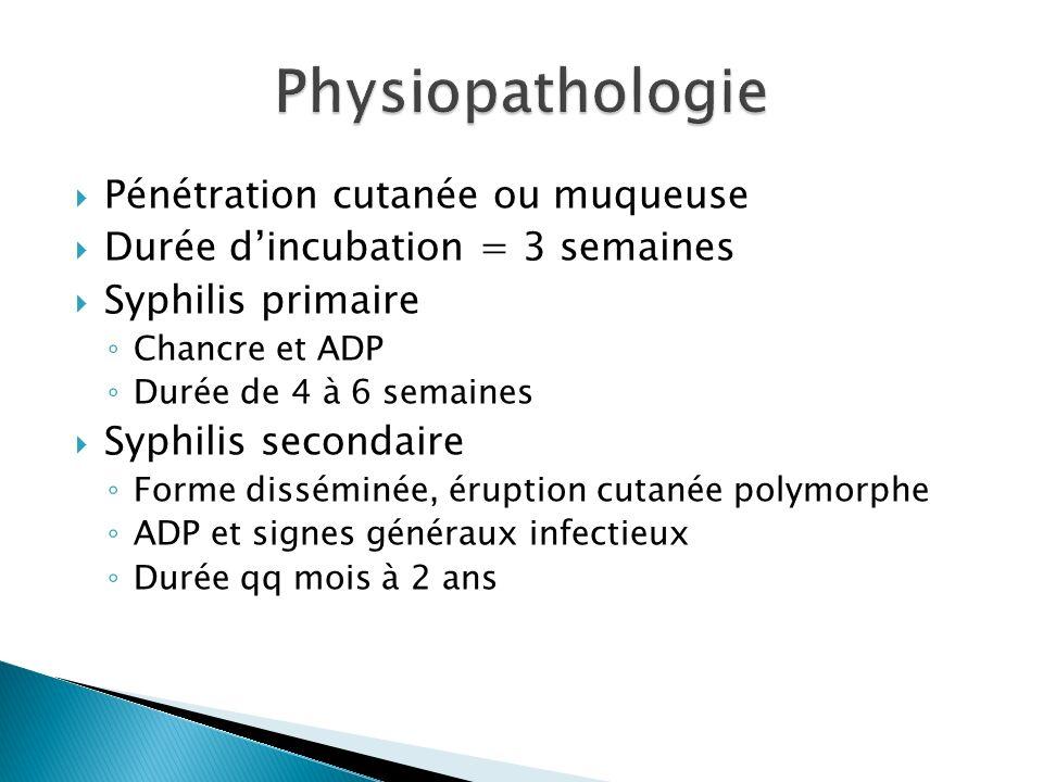 Physiopathologie Pénétration cutanée ou muqueuse