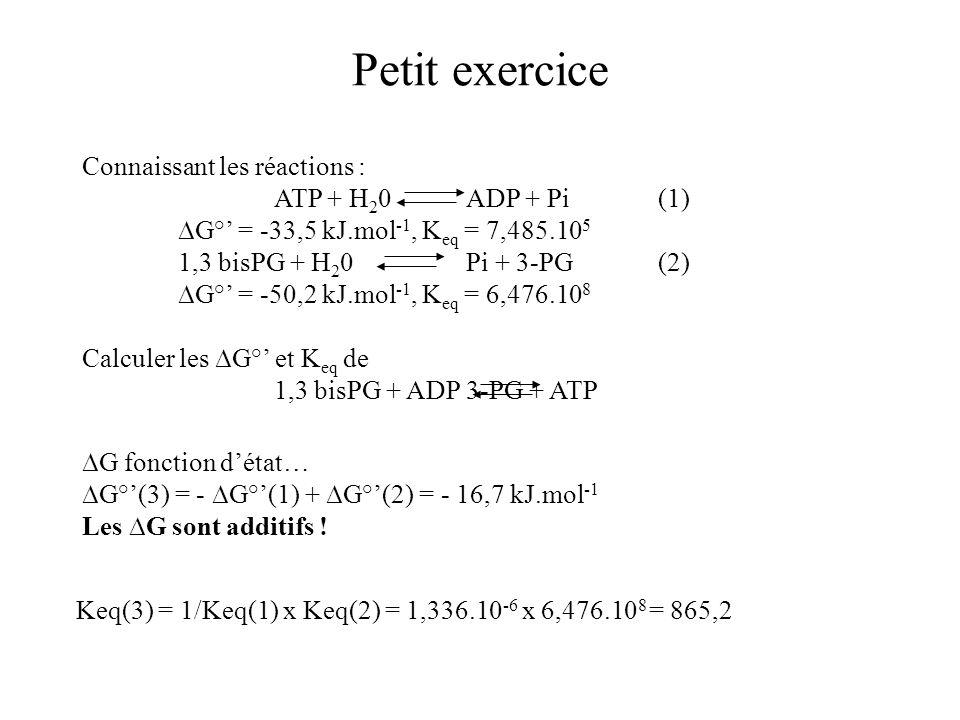 Petit exercice Connaissant les réactions : ATP + H20 ADP + Pi (1)