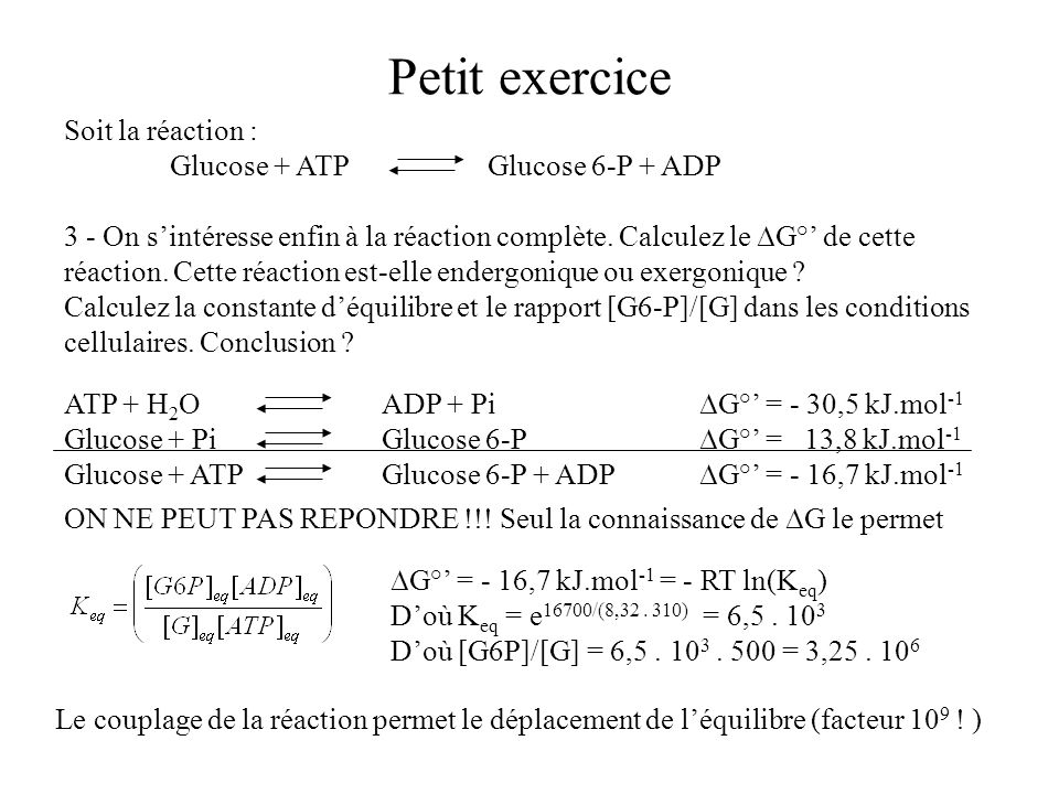 Petit exercice Soit la réaction : Glucose + ATP Glucose 6-P + ADP