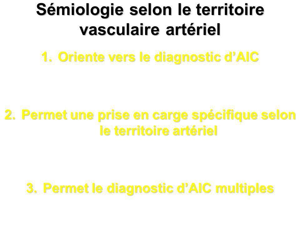 Sémiologie selon le territoire vasculaire artériel