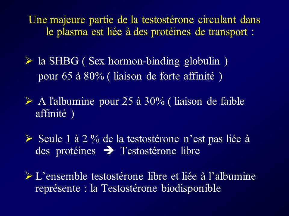 Une majeure partie de la testostérone circulant dans le plasma est liée à des protéines de transport :
