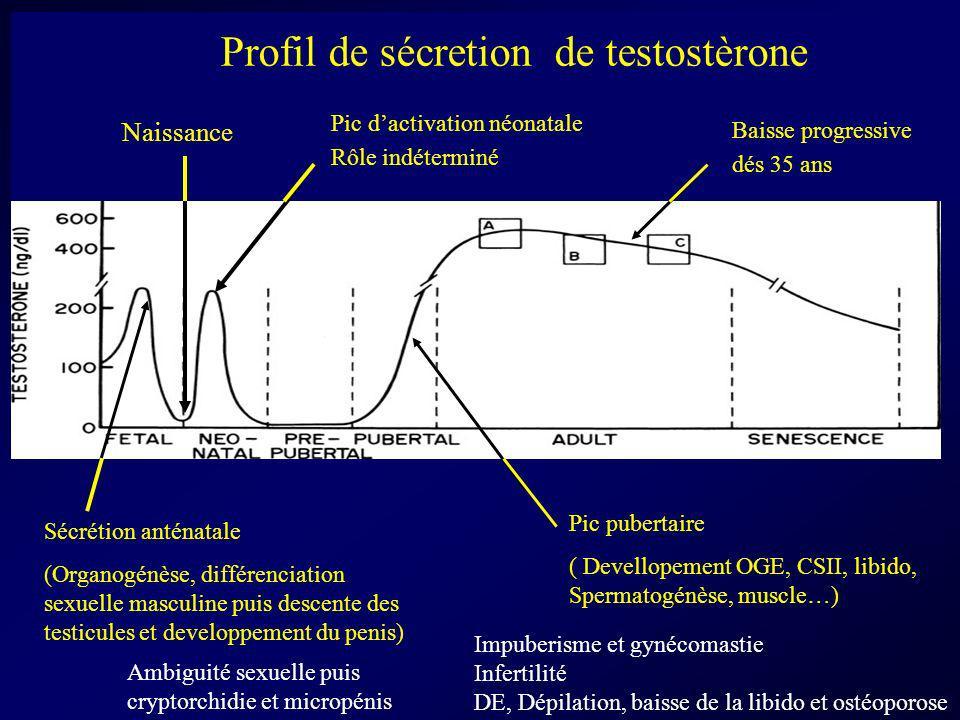 Profil de sécretion de testostèrone