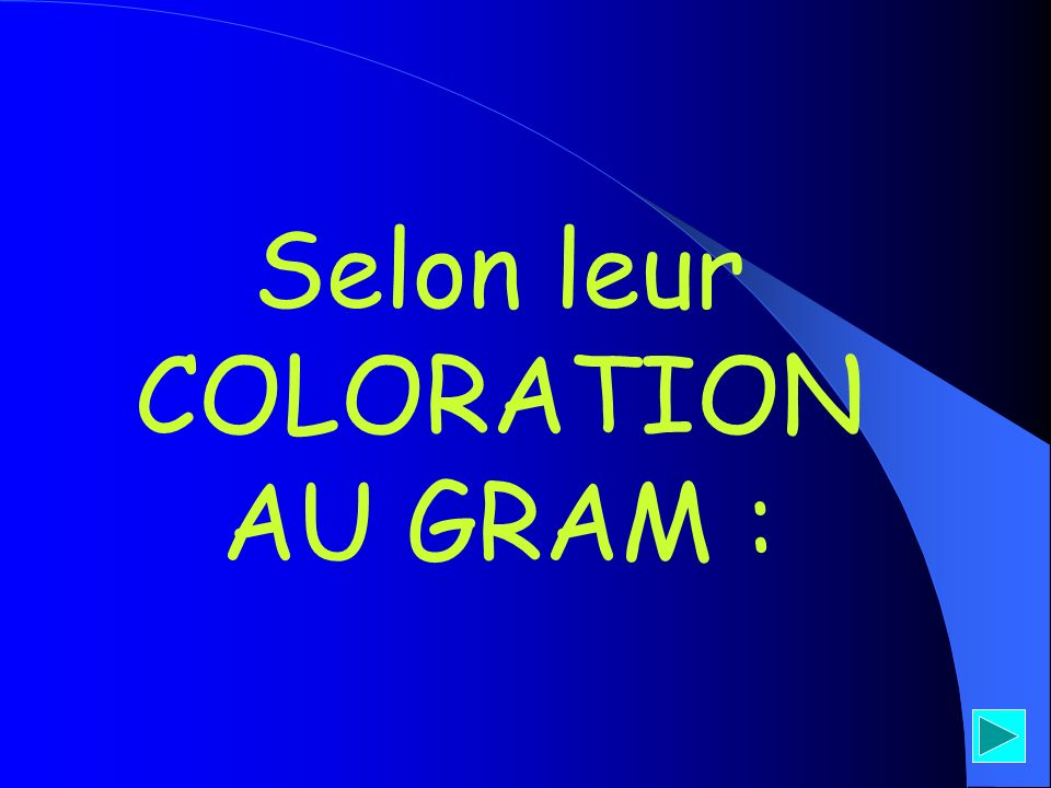Selon leur COLORATION AU GRAM :