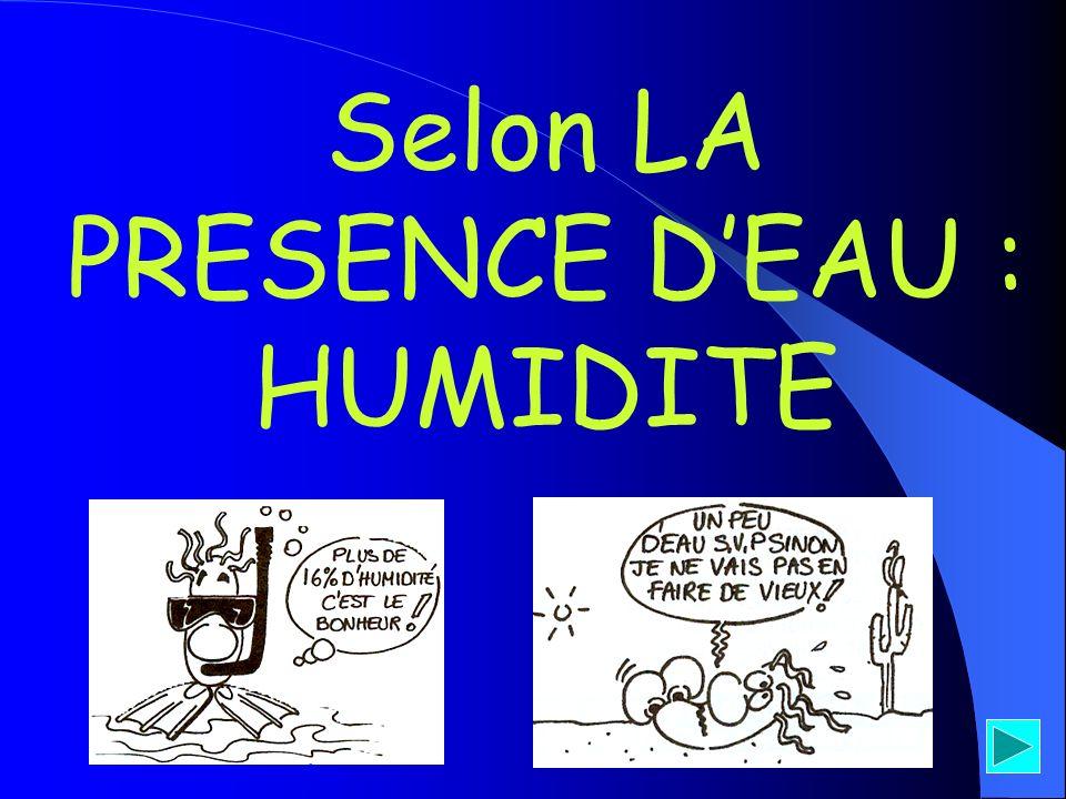Selon LA PRESENCE D'EAU : HUMIDITE