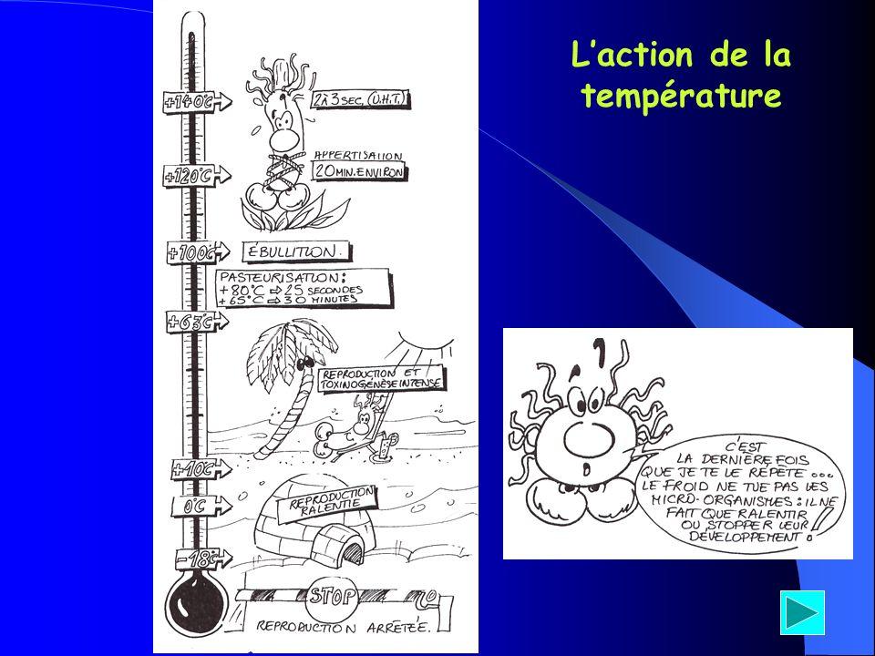 L'action de la température