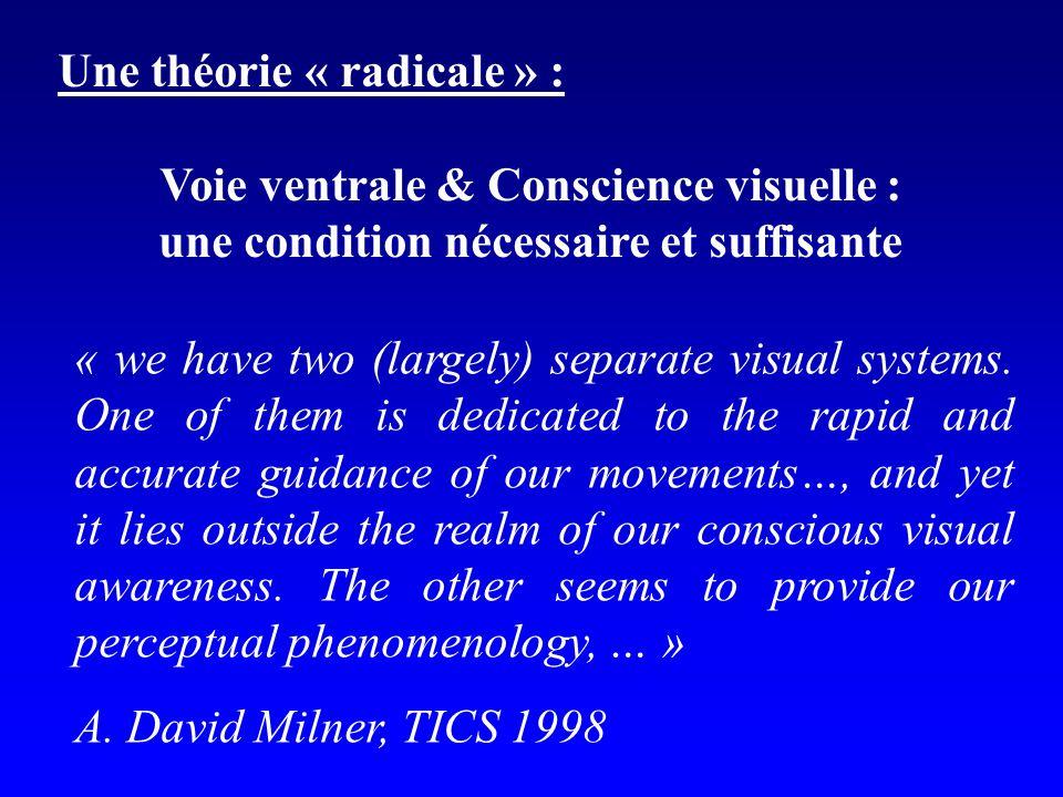 Une théorie « radicale » : Voie ventrale & Conscience visuelle :