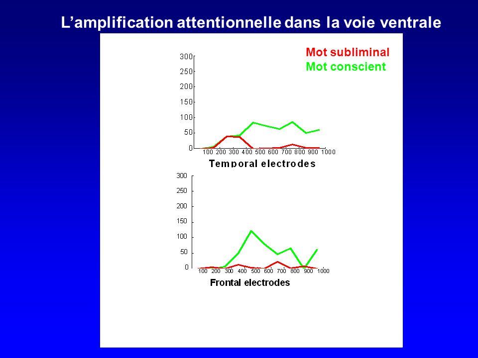 L'amplification attentionnelle dans la voie ventrale