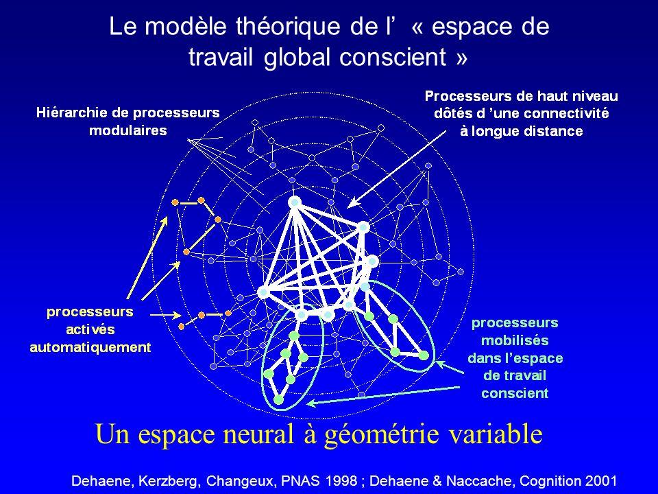 Le modèle théorique de l' « espace de travail global conscient »