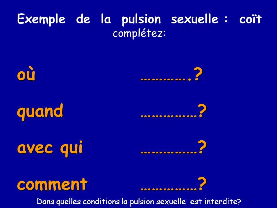 Exemple de la pulsion sexuelle : coït