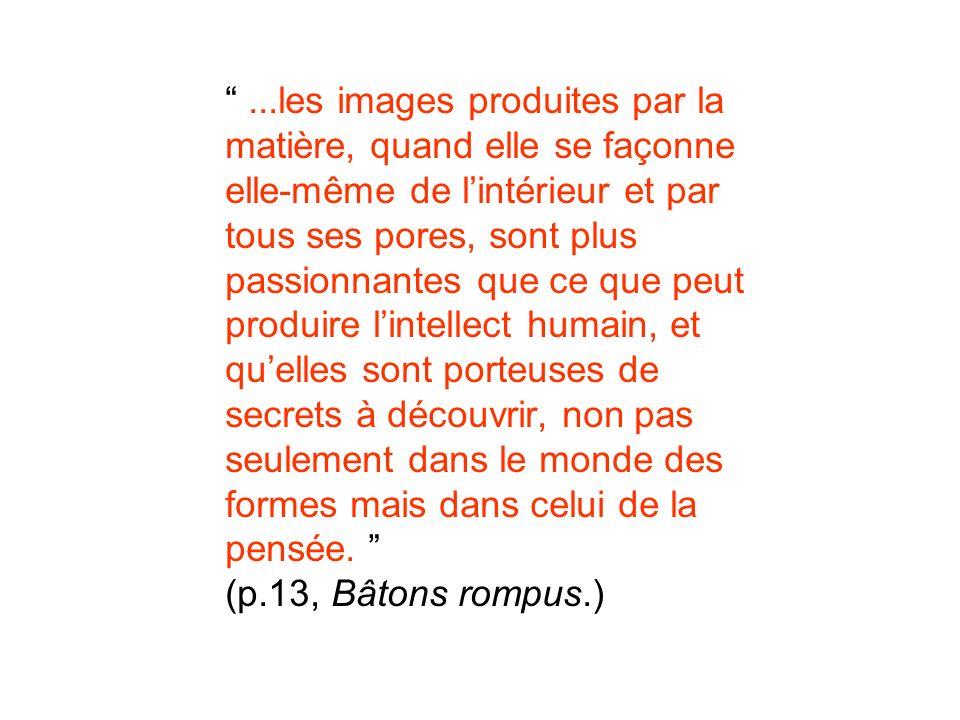 ...les images produites par la matière, quand elle se façonne elle-même de l'intérieur et par tous ses pores, sont plus passionnantes que ce que peut produire l'intellect humain, et qu'elles sont porteuses de secrets à découvrir, non pas seulement dans le monde des formes mais dans celui de la pensée. (p.13, Bâtons rompus.)