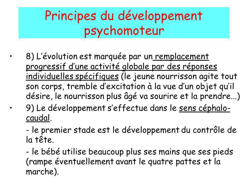 Principes du développement psychomoteur