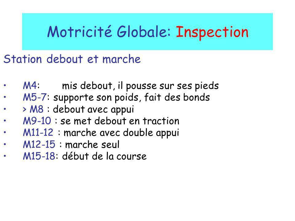 Motricité Globale: Inspection