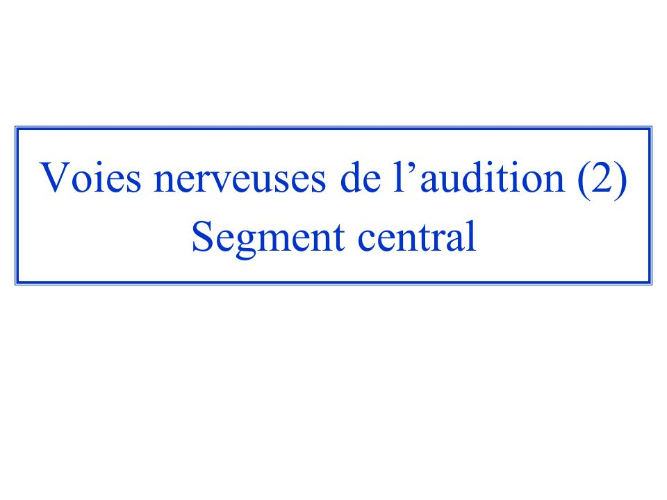 Voies nerveuses de l'audition (2) Segment central