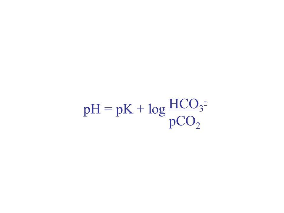 HCO3- pCO2 pH = pK + log