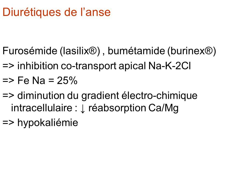 Diurétiques de l'anse Furosémide (lasilix®) , bumétamide (burinex®)