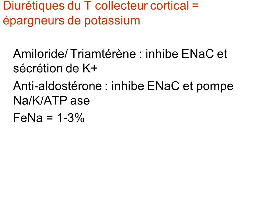 Diurétiques du T collecteur cortical = épargneurs de potassium