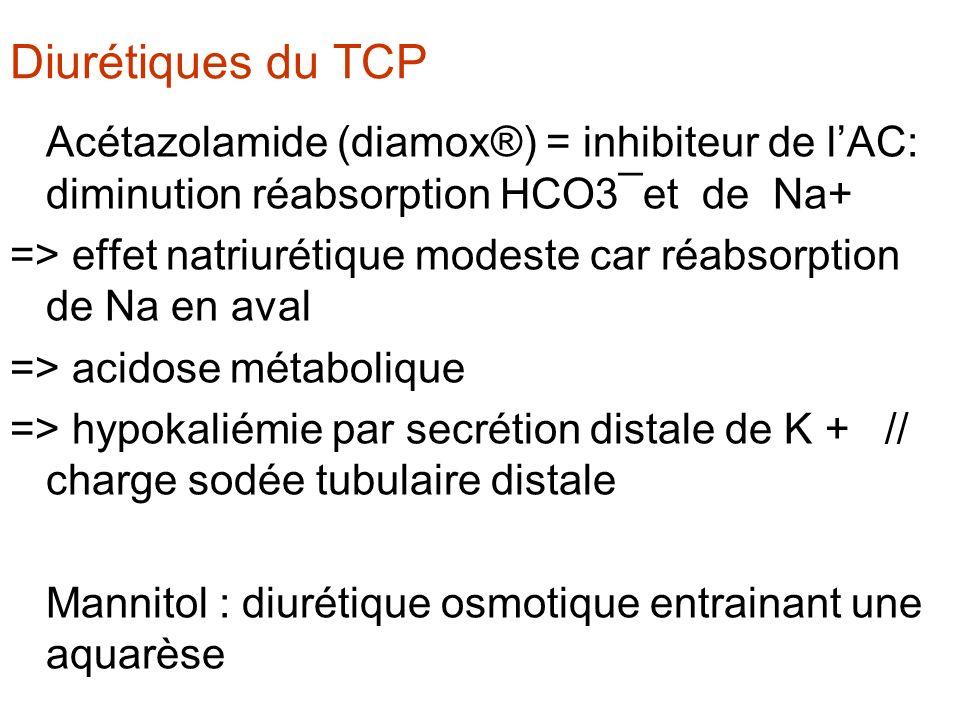 Diurétiques du TCP Acétazolamide (diamox®) = inhibiteur de l'AC: diminution réabsorption HCO3¯et de Na+