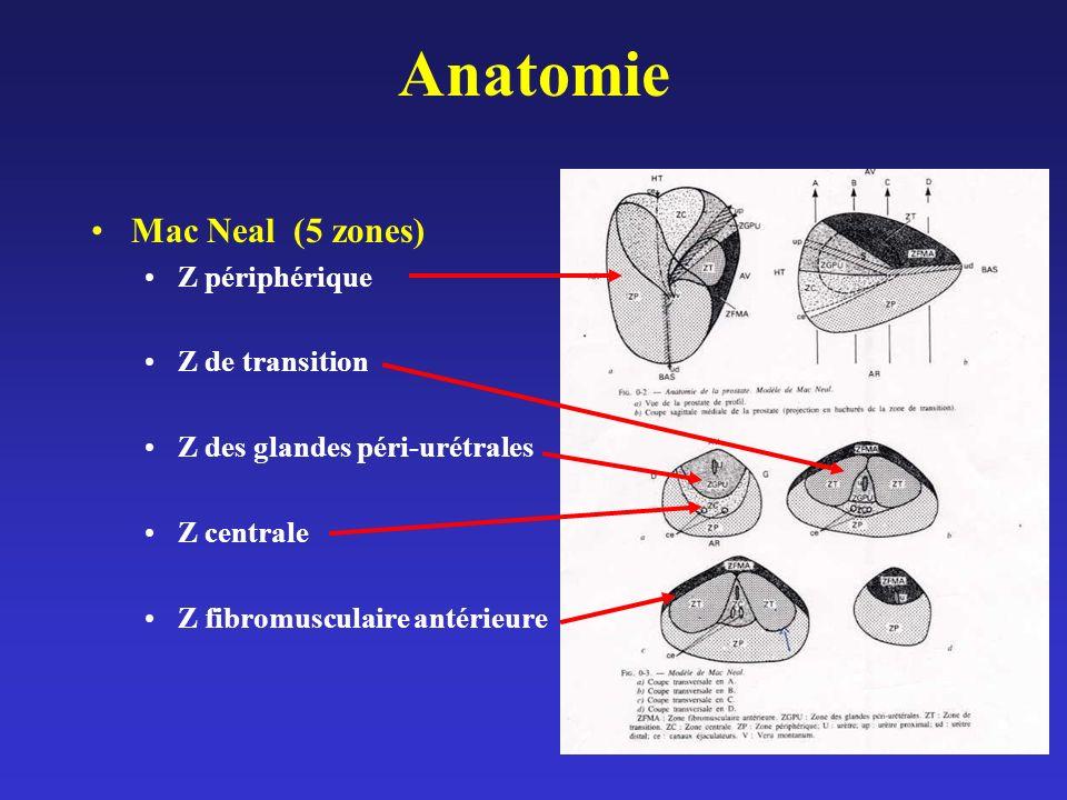 Anatomie Mac Neal (5 zones) Z périphérique Z de transition