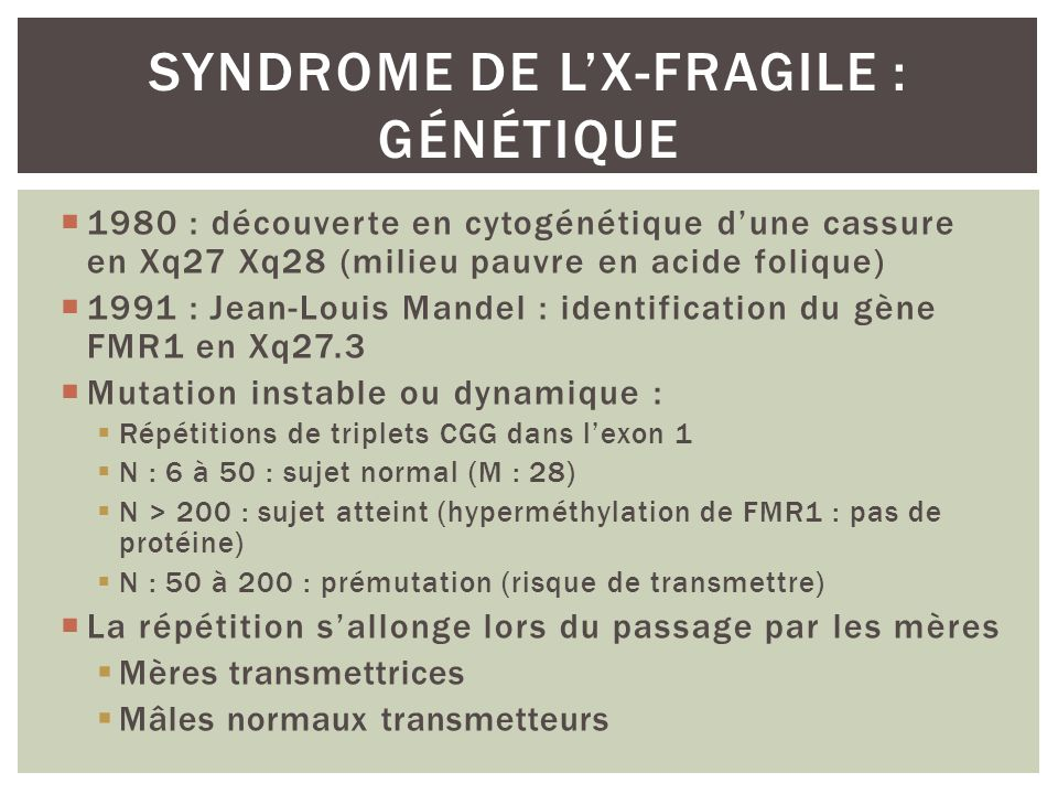 Syndrome de l'X-fragile : génétique