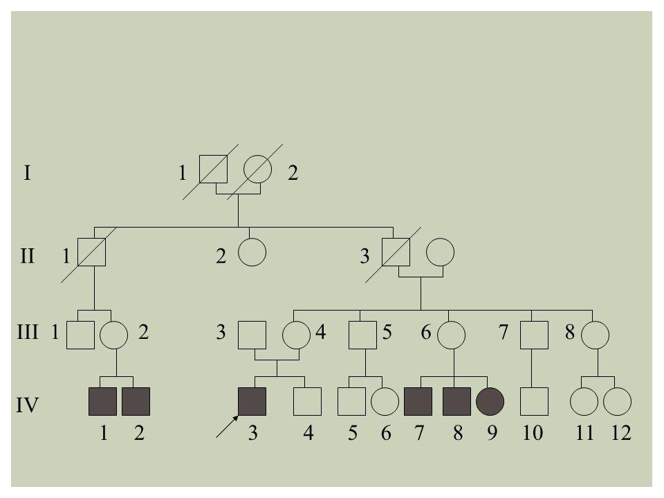 I 1 2 II 1 2 3 III 1 2 3 4 5 6 7 8 IV 1 2 3 4 5 6 7 8 9 10 11 12