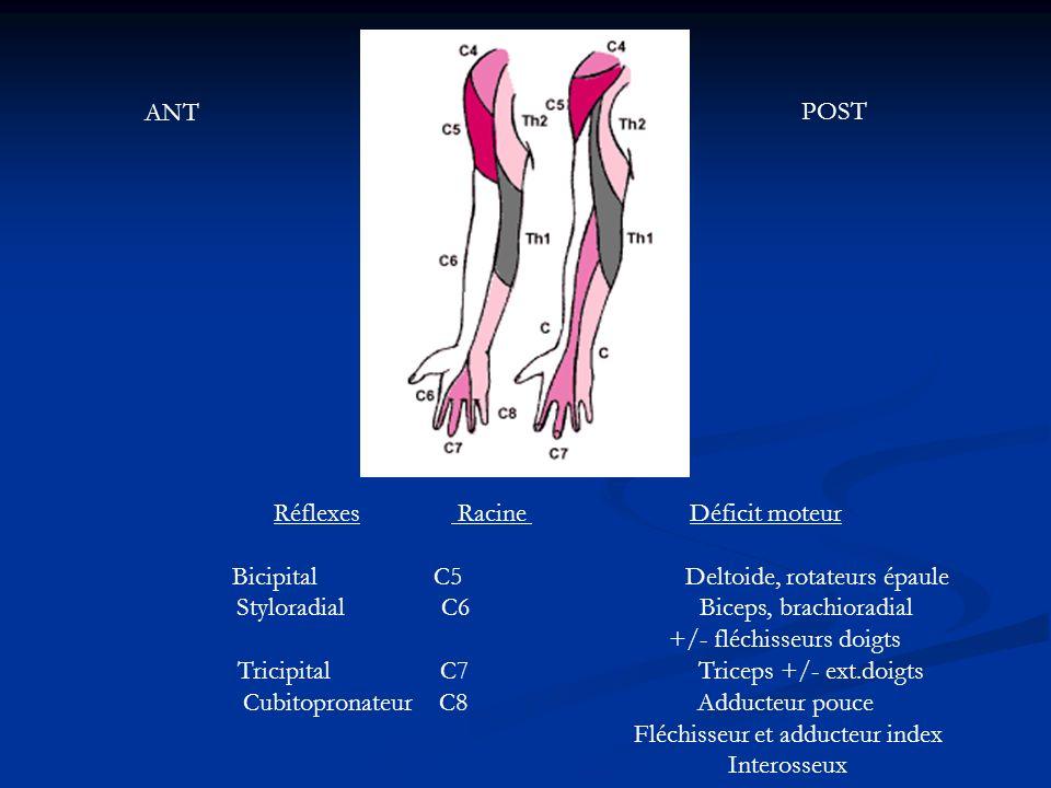 Réflexes Racine Déficit moteur Bicipital C5 Deltoide, rotateurs épaule