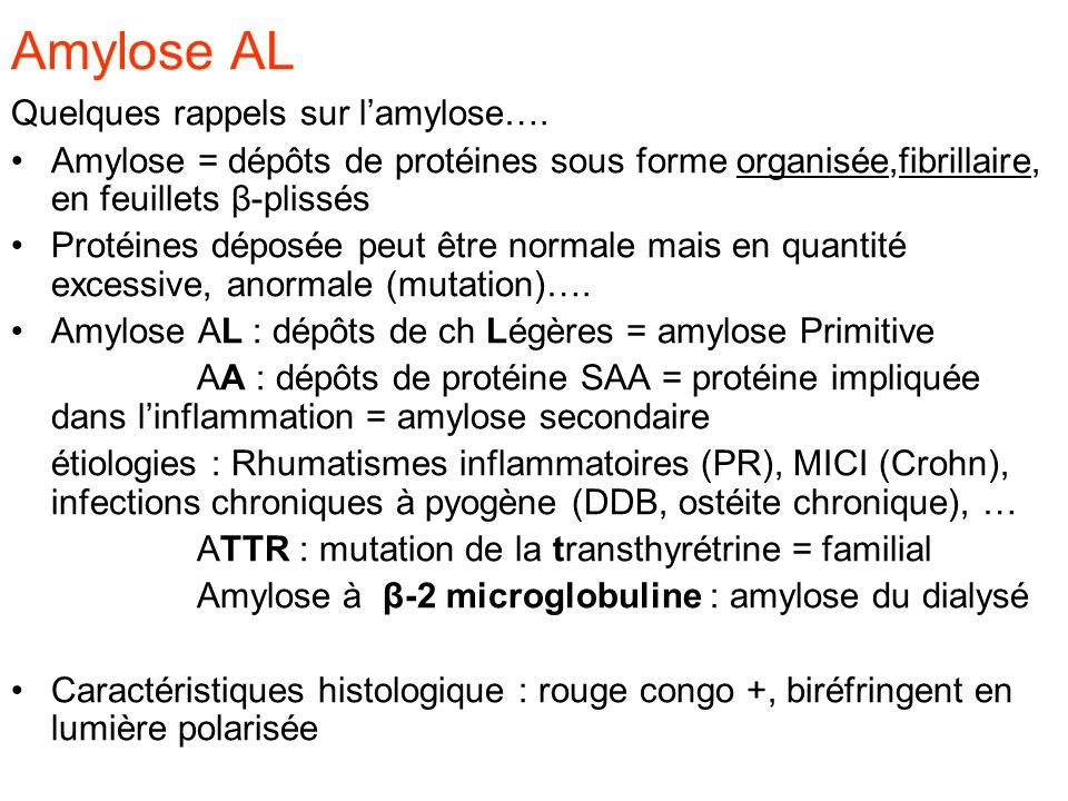 Amylose AL Quelques rappels sur l'amylose….