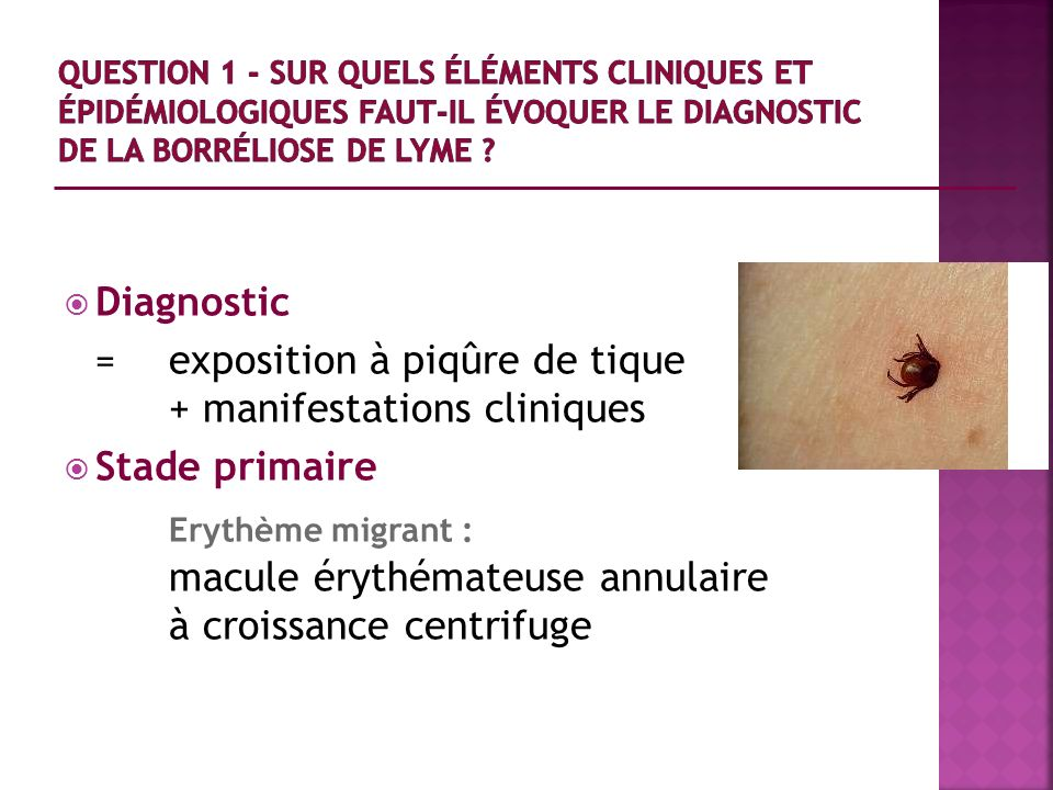 Erythème migrant : Diagnostic + manifestations cliniques