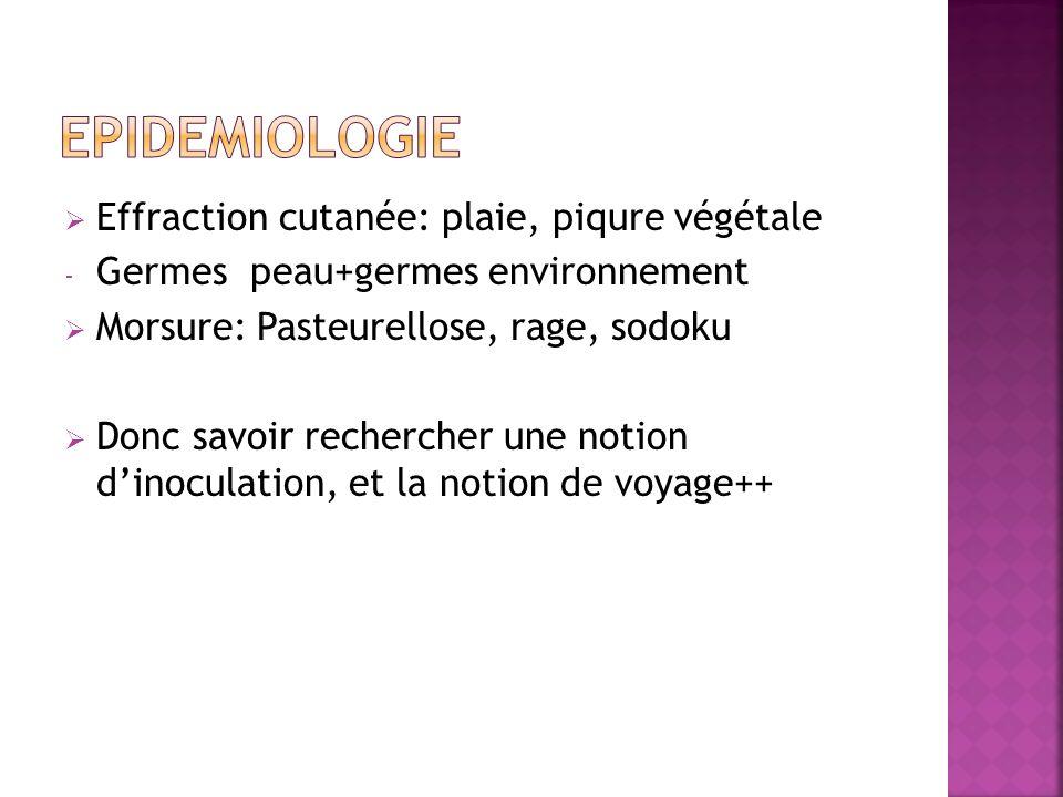 EPIDEMIOLOGIE Effraction cutanée: plaie, piqure végétale