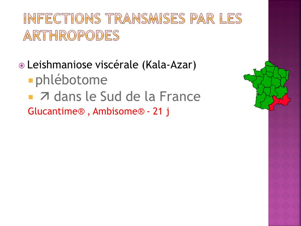 Infections transmises par les arthropodes