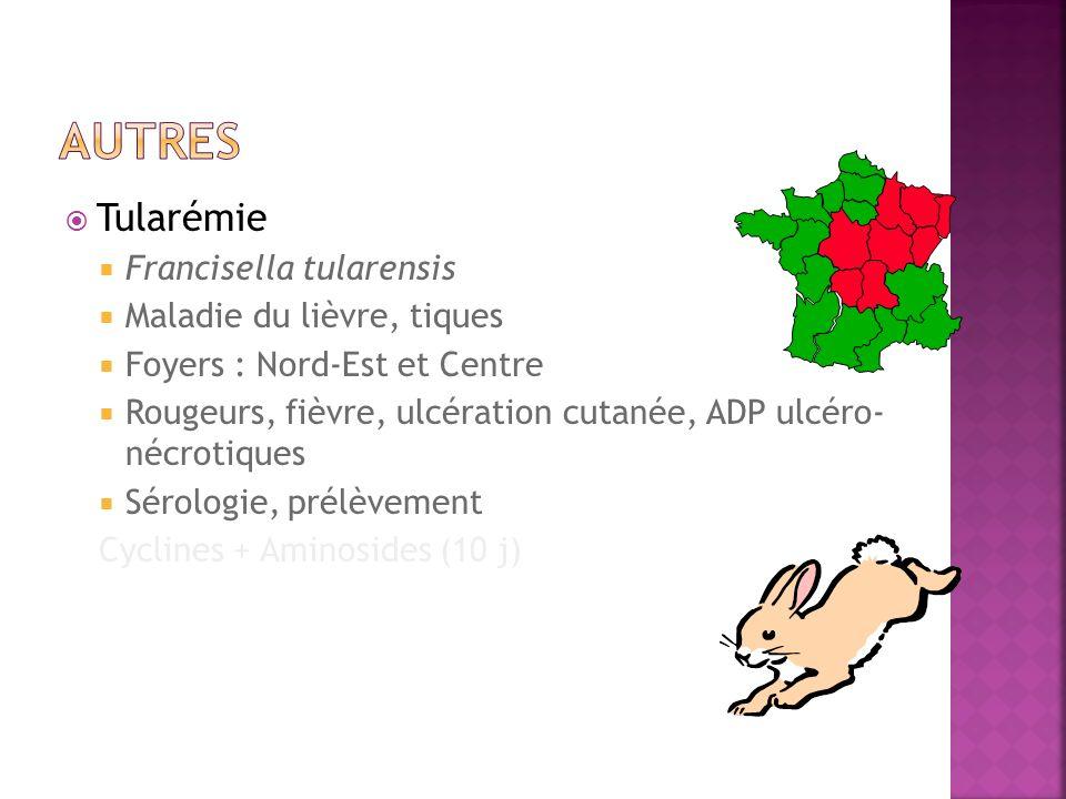 autres Tularémie Francisella tularensis Maladie du lièvre, tiques