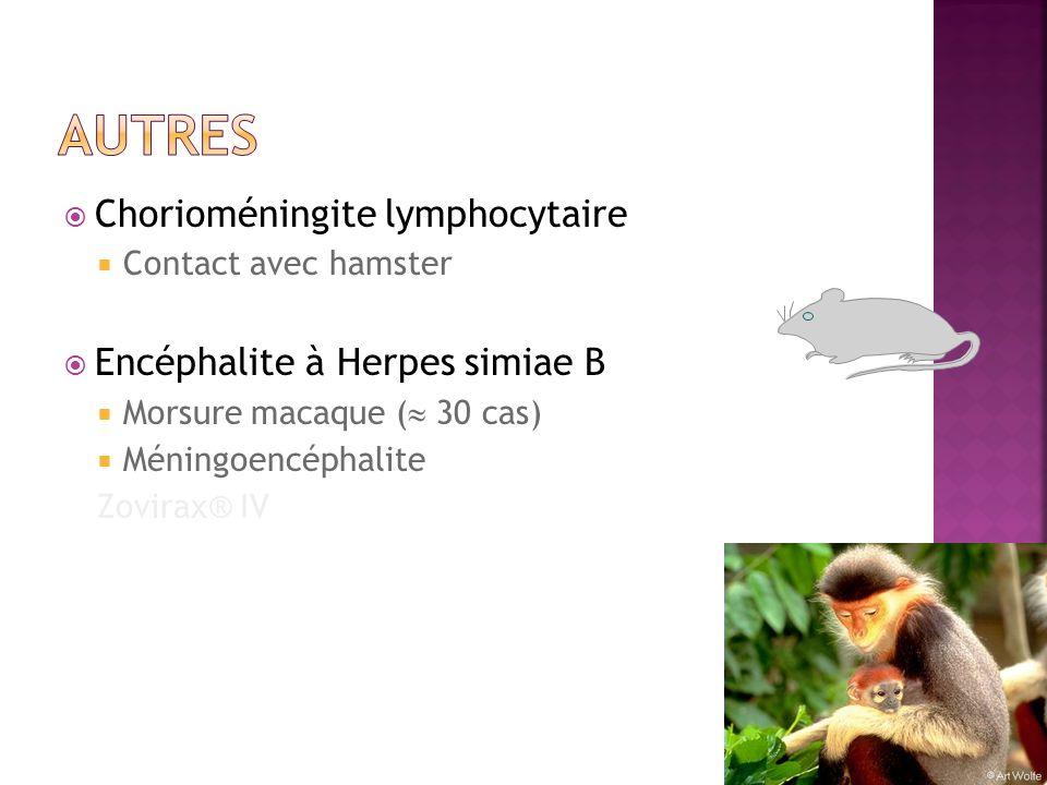 autres Chorioméningite lymphocytaire Encéphalite à Herpes simiae B