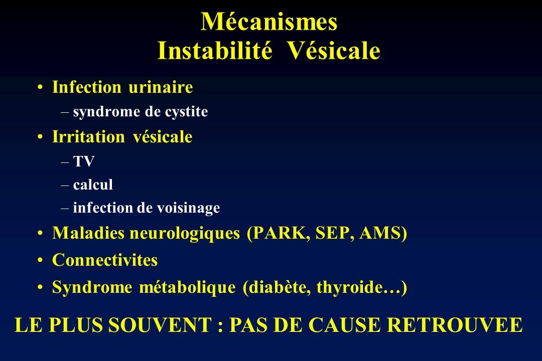 Mécanismes Instabilité Vésicale