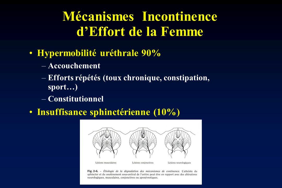 Mécanismes Incontinence d'Effort de la Femme